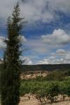 Vista de Rocafort de Queralt des d'elsObacs