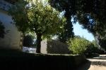 Església i cementiri d'Olzinelles