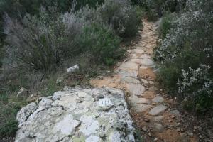 Roca amb forat i tres franges gravades al Camí Romà. Ardenya