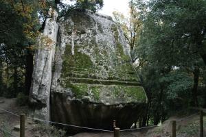 Pedra del Sacrifici de Savassona