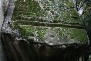 Pedra del Sacrifici del Pla de Savassona