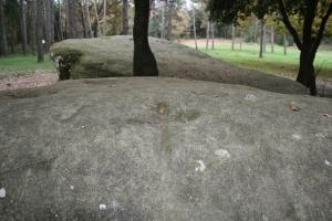 Roca amb gravats rupestres al Pla de Savassona