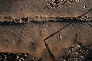 Gravats rupestres dels Cogullons. Rojals, Montblanc, Muntanyes de Prades