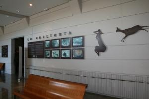 Museu de la Valltorta