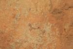 Pintures rupestres del Mas d'en Josep a laValltorta