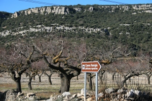 Mas de la Montalbana, accés a la Cova Remígia