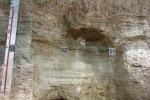 Columna amb els nivells d'ocupació a l'Abric Romaní,Capellades