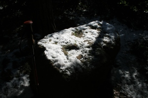 Pedra amb inscultures de Collserola amb neu