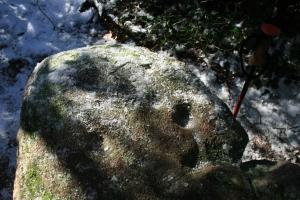 Pedra amb inscultures de Collserola