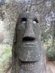 El Maorí del Bosc màgicd'Orrius