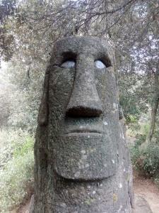 El Maorí del Bosc màgic d'Orrius