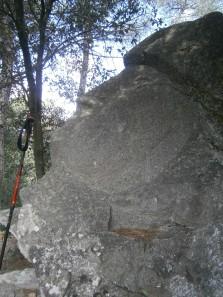 L'indi maia al Bosc màgic d'Orrius