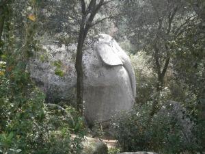 L'elefant al Bosc màgic d'Orrius